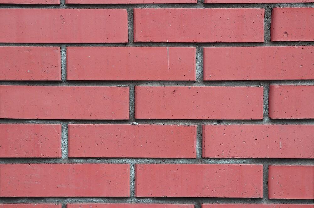 Bricks wall texture. Urban street wall by Alexander Nedviga