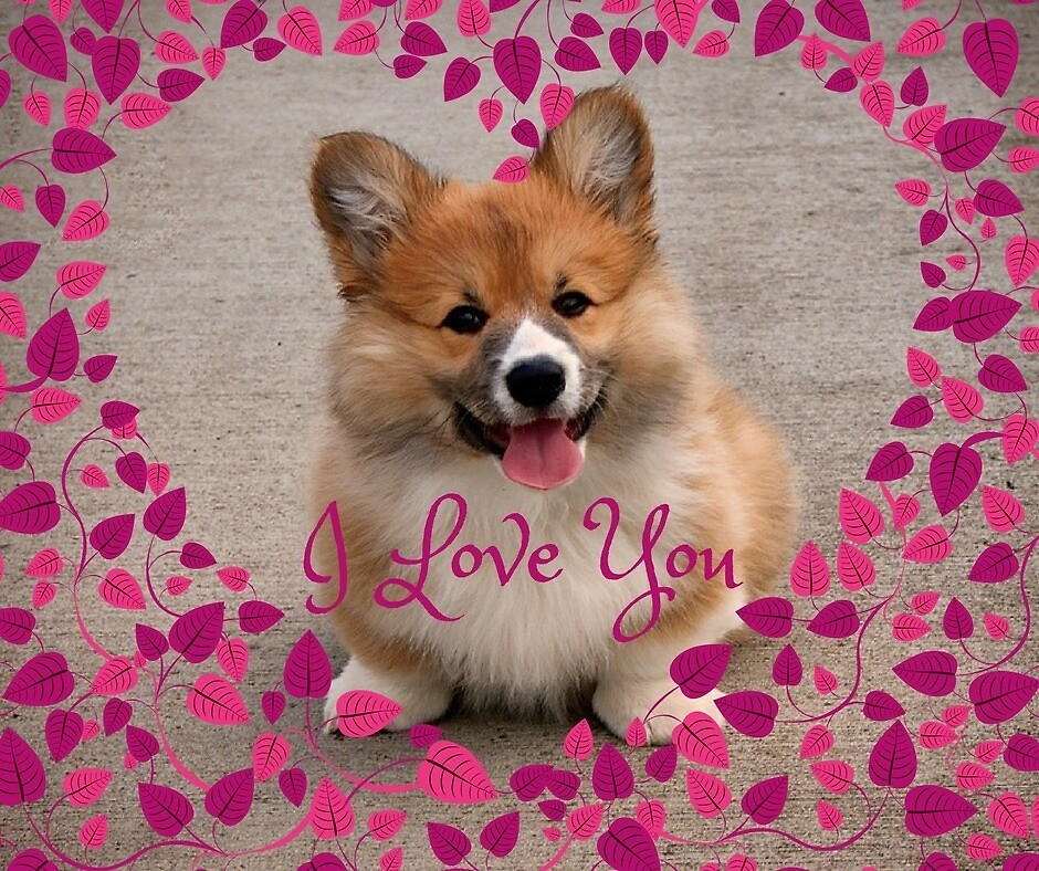 I Love You by Karen Devine