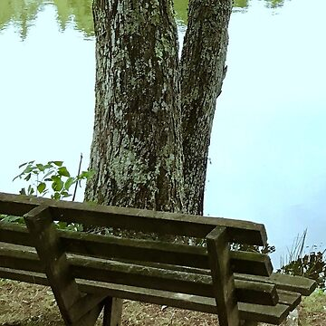 Lake Bench by NWooldridge