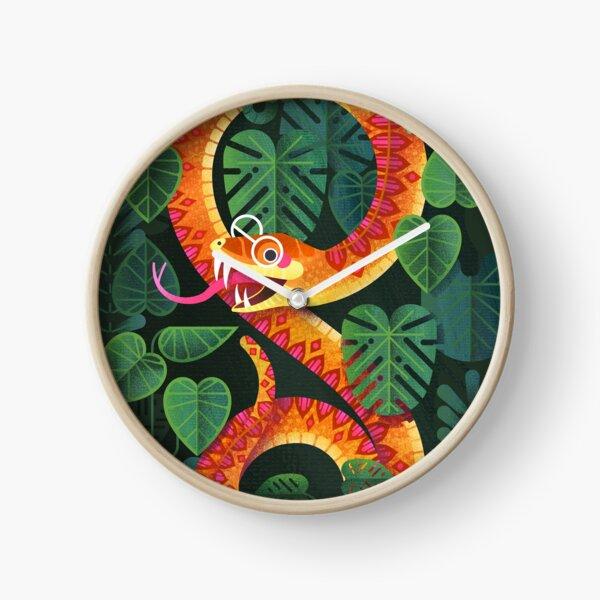 Mr Snake Visited the Optometrist Clock