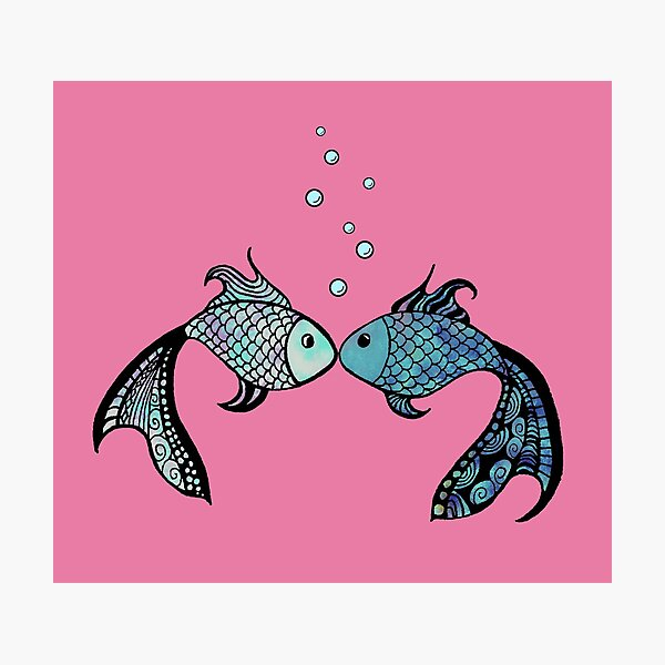 Pair of Kissing Fish on Pink Background Photographic Print