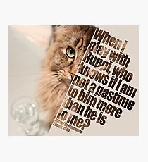 Cat picture by Ruppi - diagonal Photographic Print