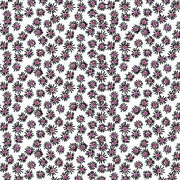 purple daisys by OfShanghai