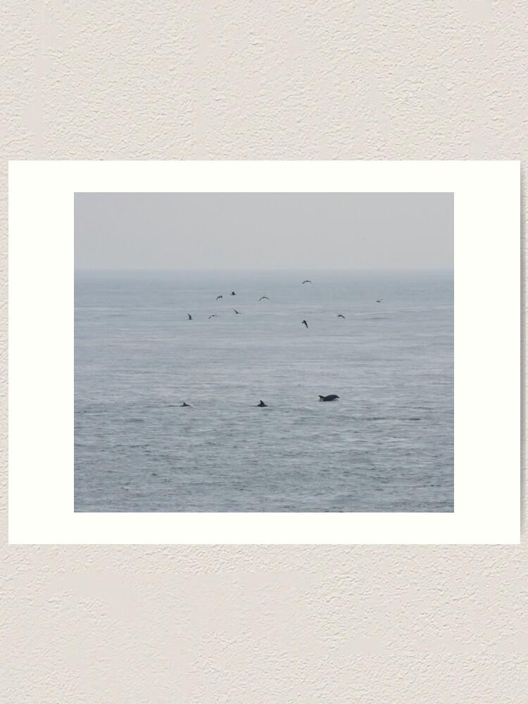 Alternate view of Dolphins near the British Isles Art Print
