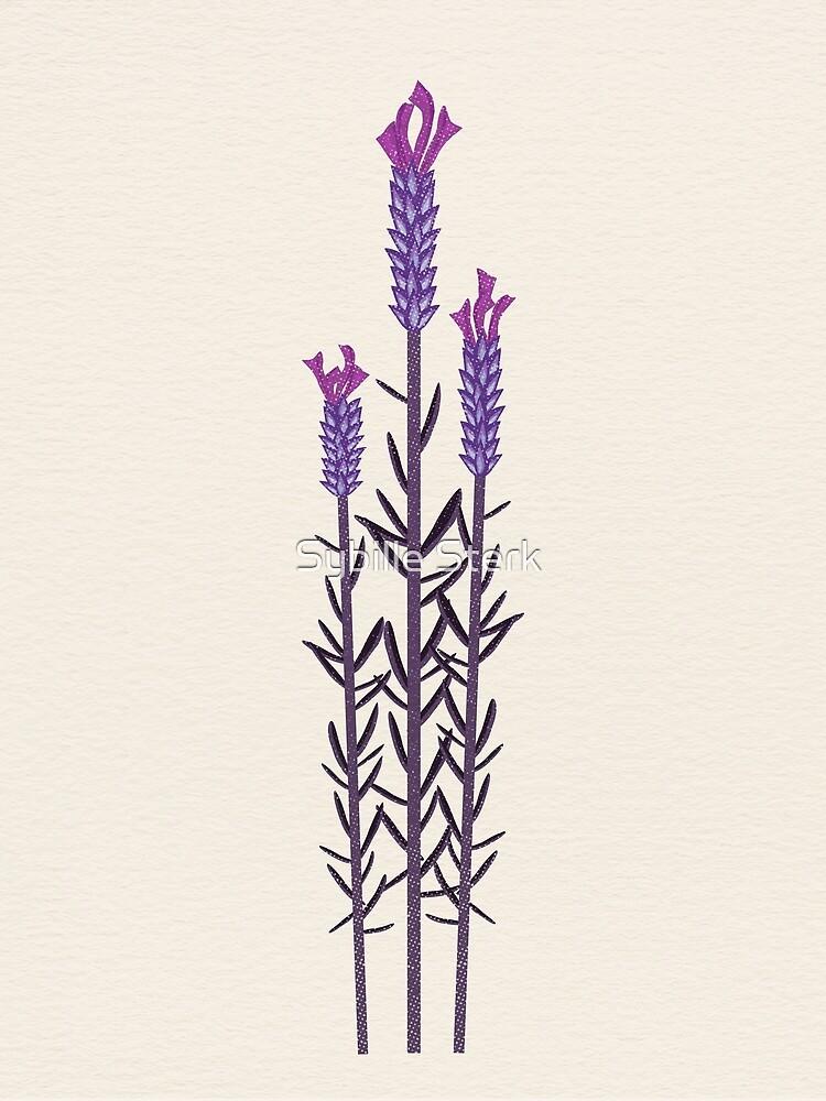 Butterfly Lavender by Sybille Sterk