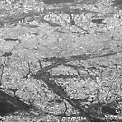 Paris from the air by gabriellaksz