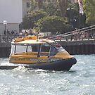 Taxi Sydney by Tom McDonnell