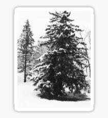 Winter Scene in New Jersey Sticker