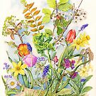 Spring Collection, 1 of a series of 4 (watercolour on paper) by Lynne Henderson
