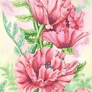 Oriental Poppy Panel (watercolour on paper) by Lynne Henderson