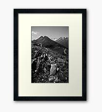 Gray Stone Framed Print