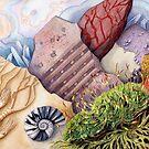 Living Rocks (watercolour on paper) by Lynne Henderson