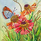 Helenium and Large Copper Butterfly (watercolour and mixed media on paper) by Lynne Henderson