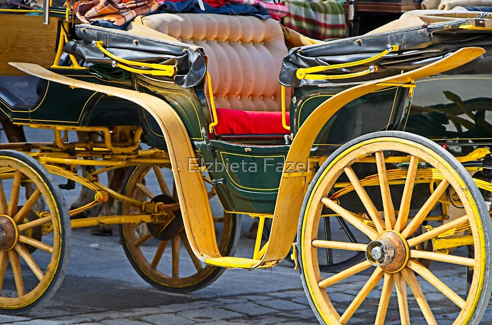 Carriage waiting for tourists on Mozart Platz in Salzburg by Elzbieta Fazel