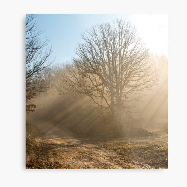 One Foggy Morning.... Metal Print