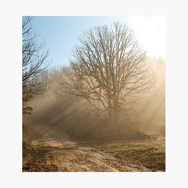 One Foggy Morning.... Photographic Print