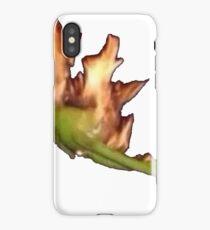 Burning Kermit  iPhone Case