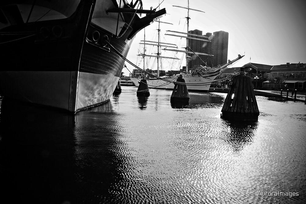 Inner Harbor by AuroraImages