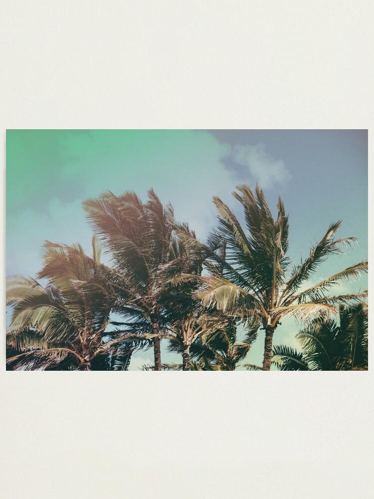 Alternate view of Vintage Palm Hawaii Summer Daze Photographic Print