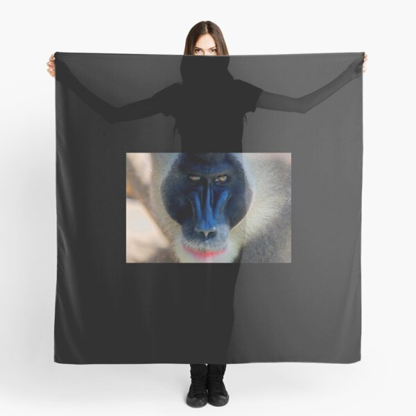 monkey looking right Scarf
