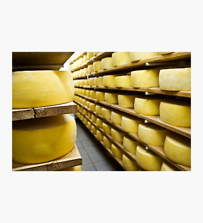 Cheese drying Photographic Print