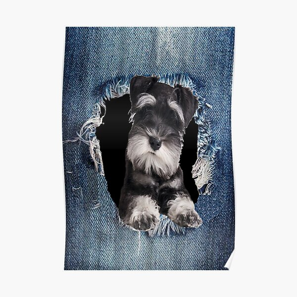 3D Schnauzer best gift for lovers Poster