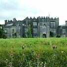 Birr Castle Demesne by Finbarr Reilly