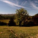 Peaceful Valley by dmark3