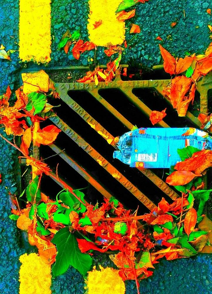 Rainwater drain    by OlaZet