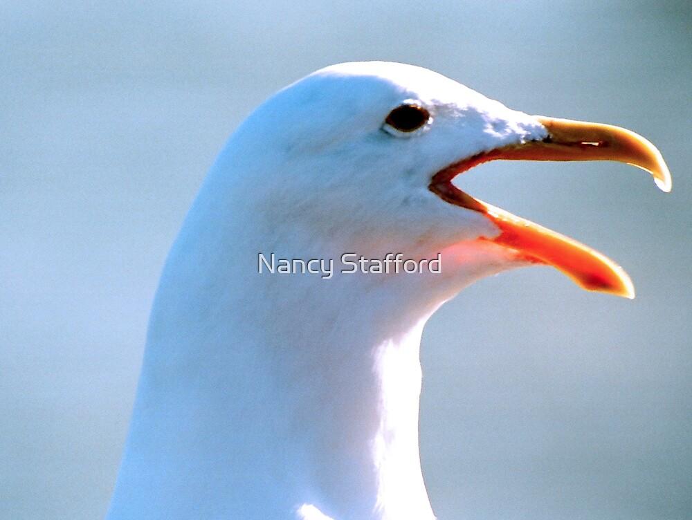 I'm A Legal Seagull by Nancy Stafford