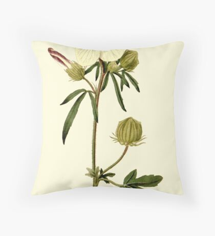 Hibiscus or Venice Mallow Flower Botanical Throw Pillow