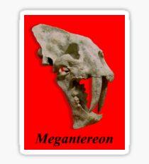 Megantereon fossil skull Sticker
