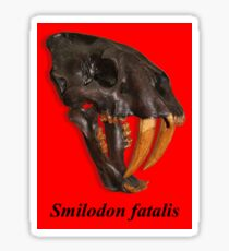 Smilodon fatalis, the Sabre Toothed Cat Sticker