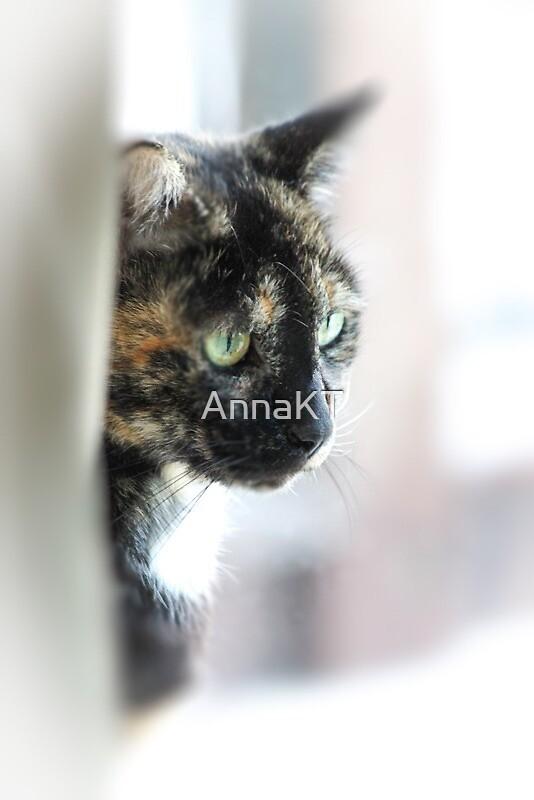 RIP Lucy by AnnaKT