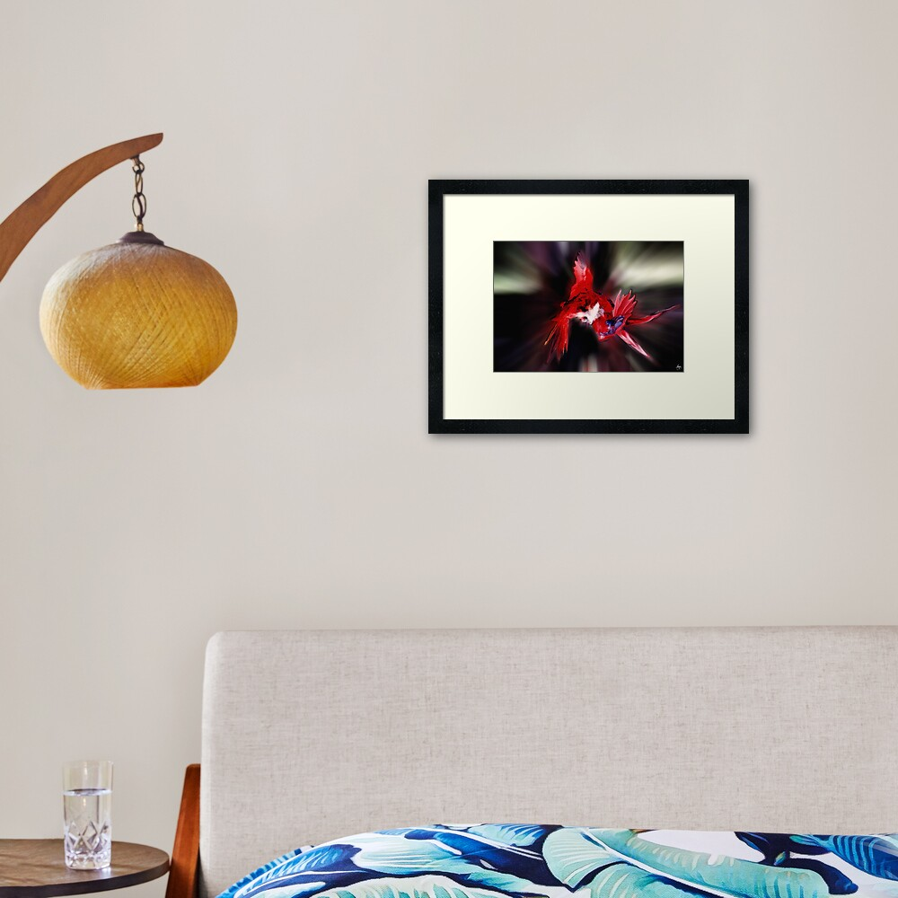 Lories Dance Framed Art Print