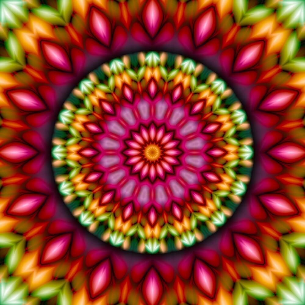 RE-EVOLUTION Mandala by Jeff Dufour