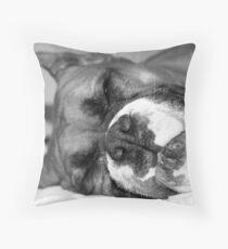 Fawn boxer dog sleeping Throw Pillow
