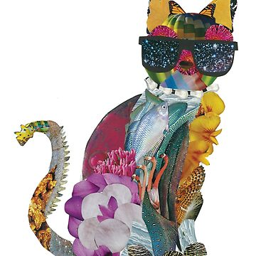 A Cat Named Pablo by AstroRose