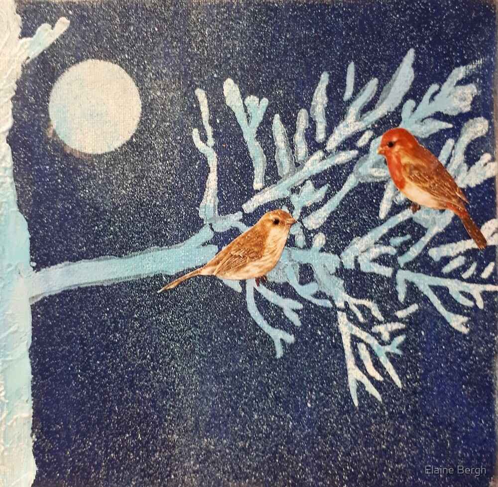 Snowy Night Birds by Elaine Bergh