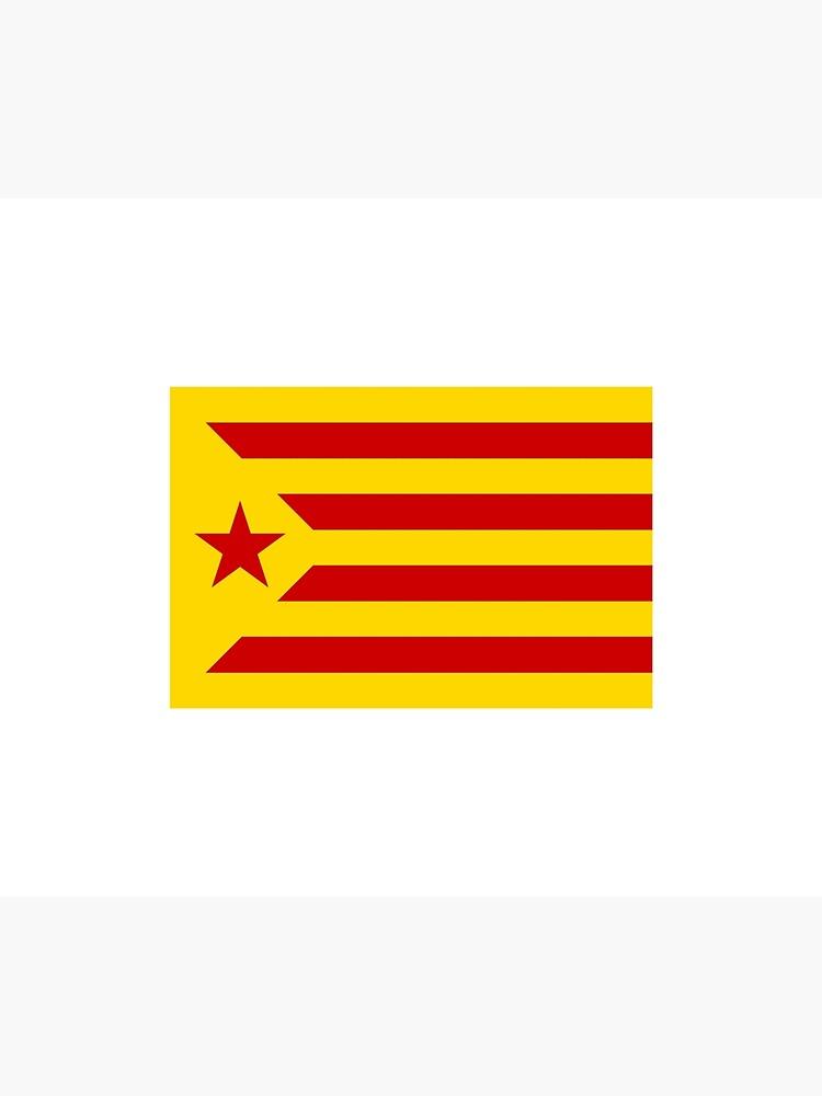 BANDERA CATALUÑA ESTELADA SENYERA CATALONIA FLAG