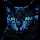 BLUE CAT ON BLACK by fuxart