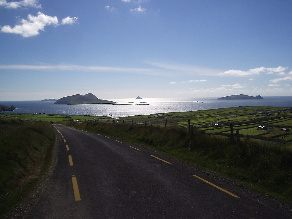 View to Blasket Islands Co. Kerry by James Cronin
