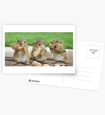 "Say ""Cheese"" (or Peanuts) Postcards"