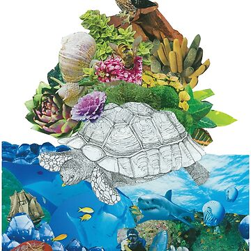 SEA TURTLE by AstroRose