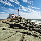 Cape Forchu Spring 2014 by Debbie  Roberts
