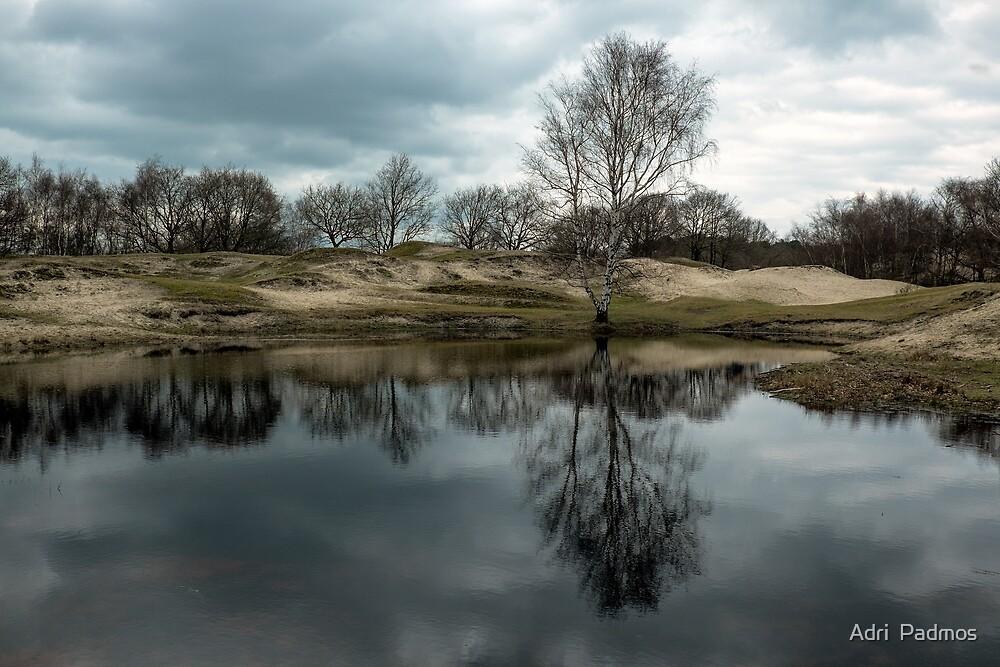 Reflections in Het Zeepe by Adri  Padmos