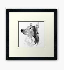 Dog Portrait Framed Print