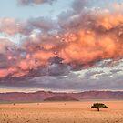 Namibian Plains at Sunset by Mieke Boynton