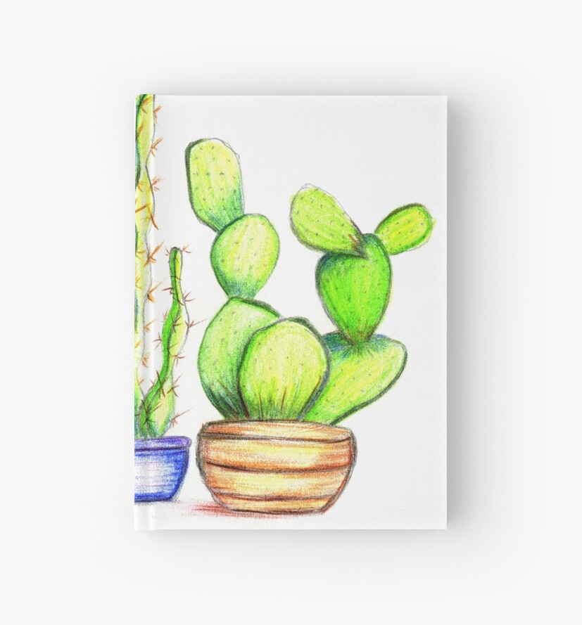Cacti Garden by claudipro