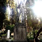 Churchyard Angel Marble Statue Sun Glare by cocodesigns